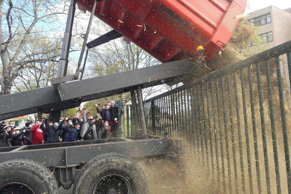 Du foin a été déversé derrière les grilles de la Dreal, à Dijon, ce 6 avril 2021.