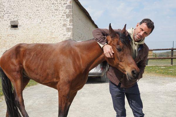 Vincent Chatelain amoureux des chevaux
