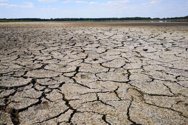 L'étang des Landes, la réserve naturelle d'eau la plus importante du Limousin, presque tari, en juillet dernier