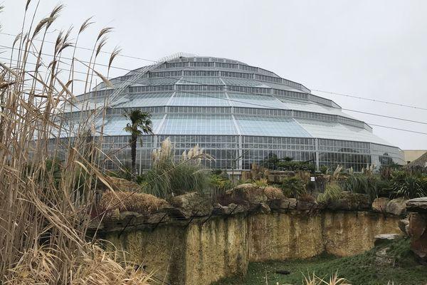 Le dôme équatorial du ZooParc de Beauval