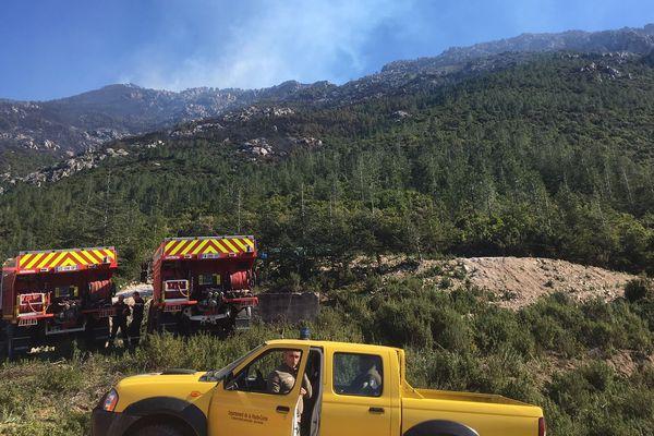 À Calenzana, le feu a été maîtrisé par les pompiers.