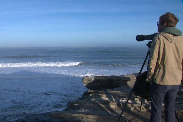 La vague est visible au large de la corniche d'Urrugne.
