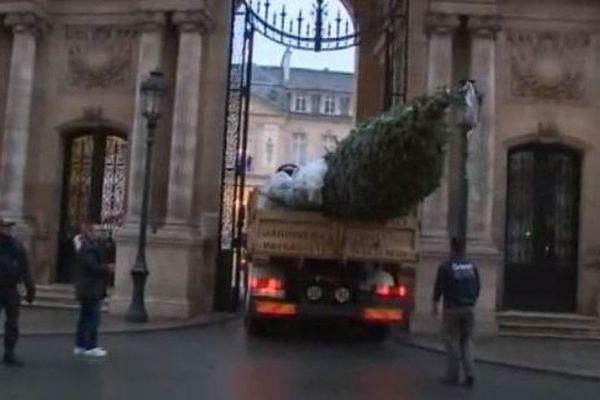 L'arrivée du sapin de Noël à l'Elysée.