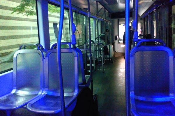 L'intérieur des bus Némo, le matin du lancement des quatre nouvelles lignes le samedi 11 mai 2019.