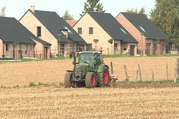 900 hectares de terres agricoles disparaissent chaque année dans le Nord et le Pas-de-Calais.