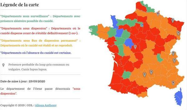 Selon l'Observatoire du Loup (ODL), une organisation indépendante et bénévole, la Saône-et-Loire est un département où le loup peut s'établir définitivement.