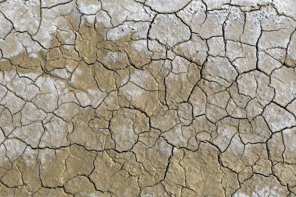 Face à la sécheresse provoquée par la chaleur et les faibles précipitations, la préfète du Puy-de-Dôme a pris des mesures.
