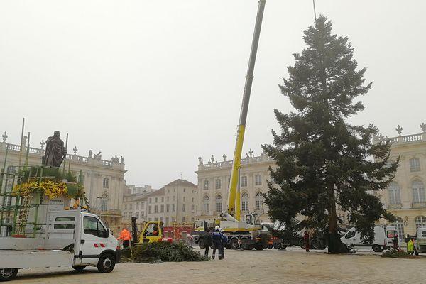 Installation du sapin de Noël sur la Place Stanislas à Nancy (Meurthe-et-Moselle), le 14 novembre 2018.