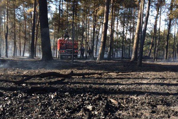 100 pompiers et 18 véhicules sont mobilisés pour lutter contre les flammes.
