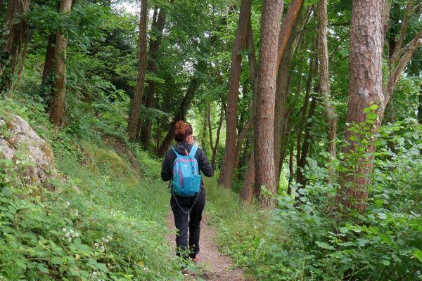 Le parc des Chaumes à Avallon