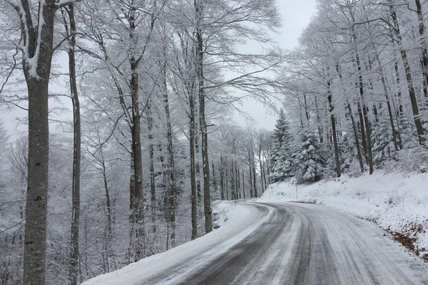 Archives : le Mont-Aigoual enneigé, le 1er décembre 2017