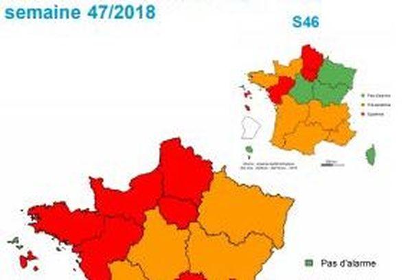 Entre la semaine 46 et la semaine 47, le nombre de passage aux urgences en France pour la bronchiolite ont augmenté de 63 %.