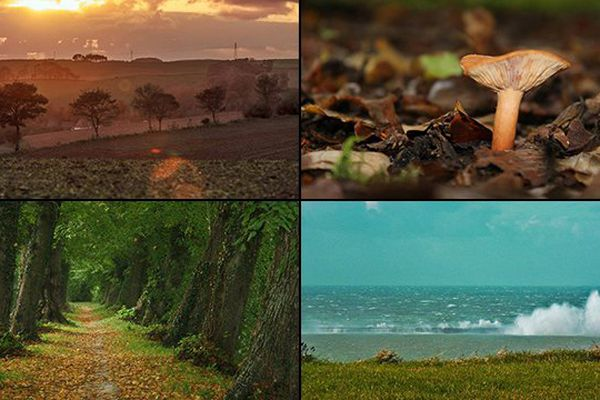 4 photos de l'automne en Nord Pas-de-Calais.