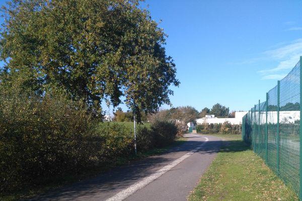 La pylône serait installé à une dizaine de mètres de ce chêne planté devant le collège Tabarly à La Baule