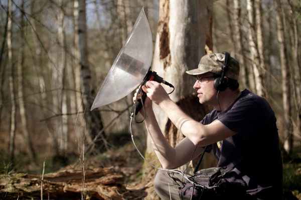 Marc Namblard en train d'enregistrer des bruits de la forêt.