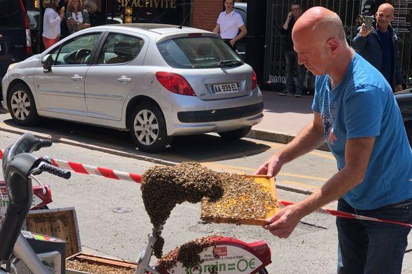 Thierry Rolland a été appelé hier pour venir récupérer un essaim d'abeilles qui s'était installé, en plein centre-ville, sur la selle d'un VélôToulouse.