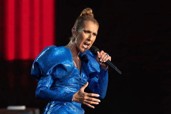 Profiter de l'engouement autour de la venue de Céline Dion à Carhaix, l'ambition des membres du collectif du Téléthon