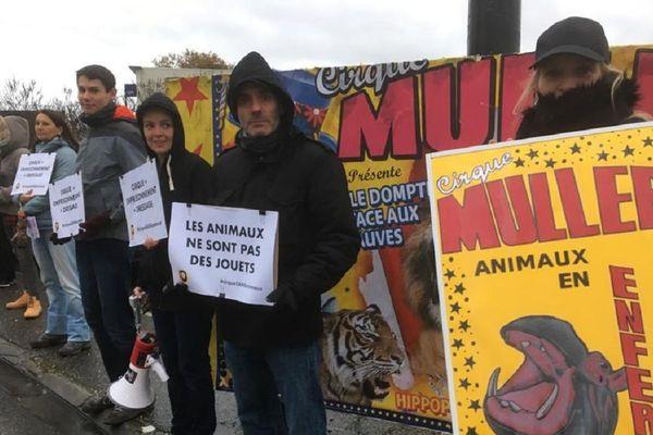 Des militants de l'association Paris Animaux Zoopolis, devant le cirque Muller.