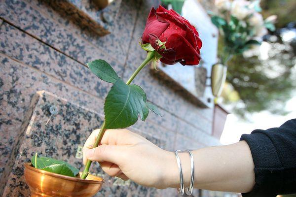 Si certains proches récupèrent l'urne, d'autres la dispose dans une case de columbarium dans un cimetière.