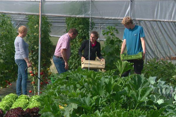 Au pays de Bray, ces agriculteurs ont choisi de cultiver la confiance avec les clients