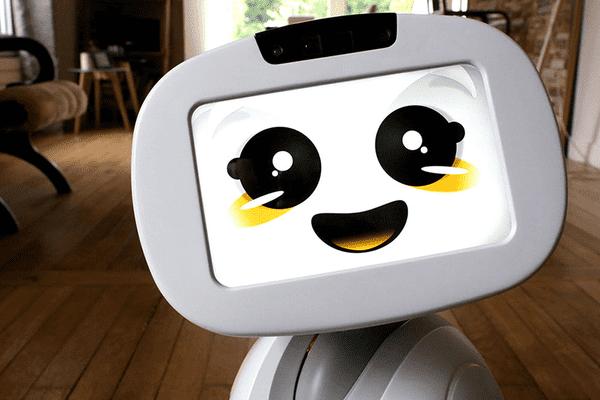 Un exemple de robot, ici Buddy !