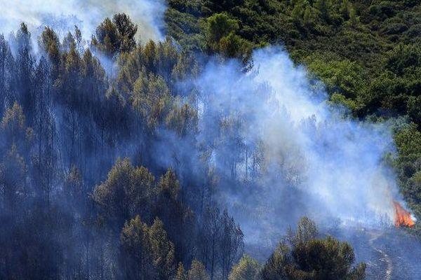 Un incendie près de Montpellier, en août 2010 / illustration