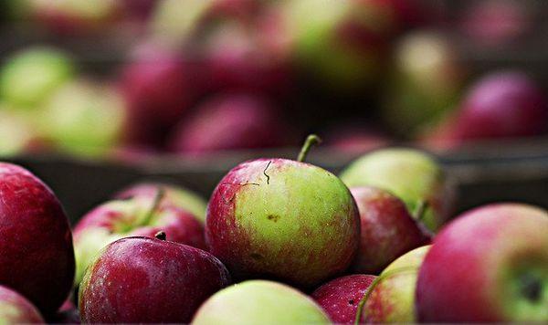 Continuons à manger des pommes, si elles sont bio.