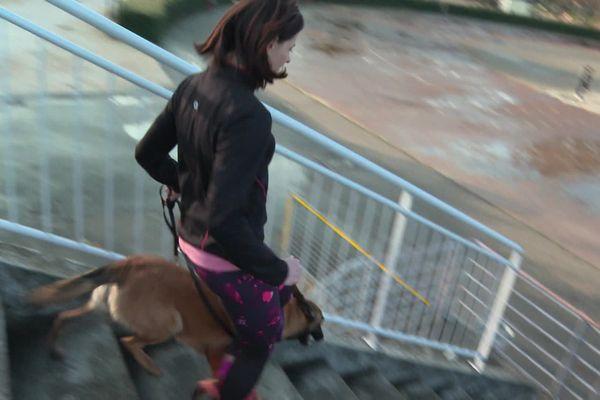 Les chiens, comme les humains ont besoin de se dégourdir et de se dépenser