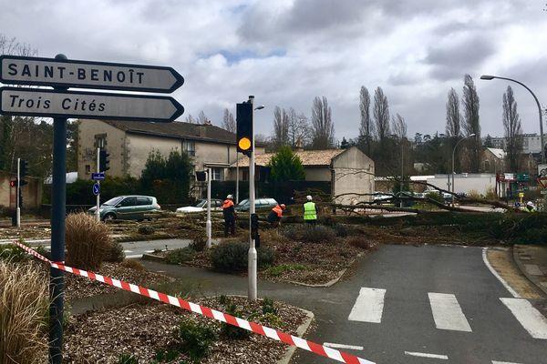 En début d'après-midi, à Poitiers, un arbre tombé sur la chaussée aux abords du pont Saint-Cyprien perturbe la circulation