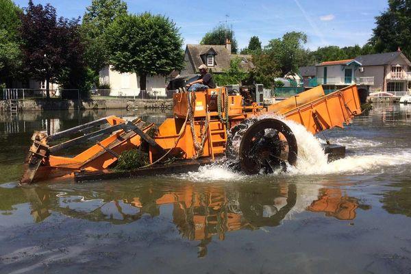 Le bateau faucardeur arpente le Loiret