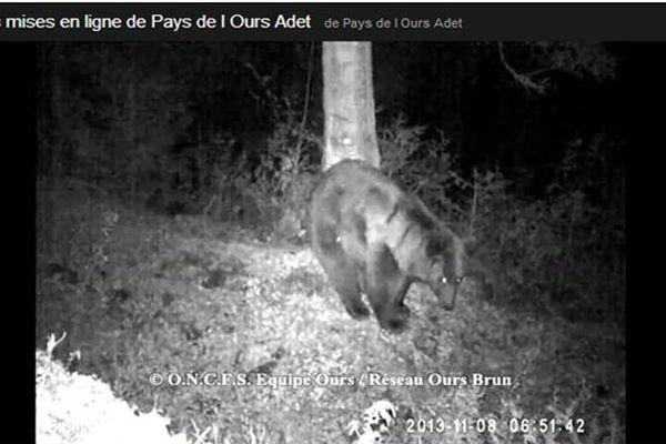 Images capturées à Saint-Lary (Ariège) le 8 novembre 2013