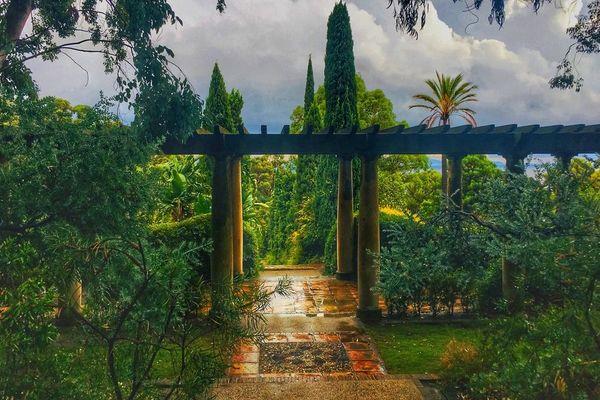 Le jardin et les hommes, un reportage inédit sur le jardin du Rayol Canadel à voir mercredi 23 janvier après le Soir 3 sur France 3 Provence-Alpes Côte d'Azur