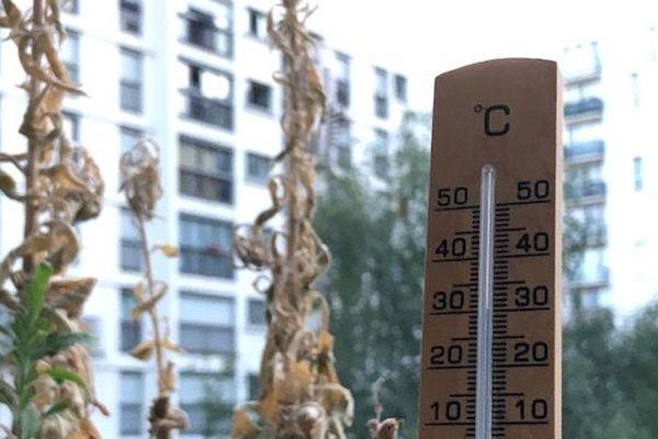 Jeudi matin, les températures s'approchaient déjà des 30 degrés.