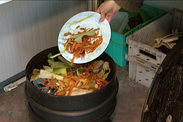 Déchets ménagers pour compostage
