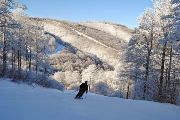 Il n'y aura pas de ski de piste à Noël cette année