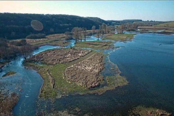 Les marais de la vallée de la Druyes, dans l'Yonne