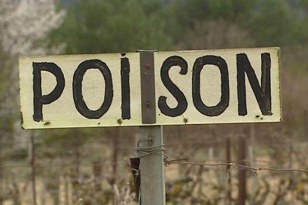 Les apiculteurs de l'Aude dénoncent les pesticides qui tuent leurs abeilles