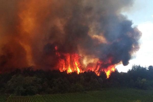 L'incendie spectaculaire sur le plateau de Chenôve, au sud de Dijon, ce lundi 20 juillet 2015.