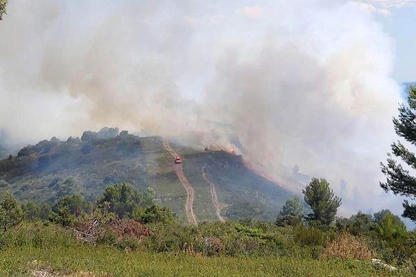 Une centaine de pompiers est partie à l'assaut d'un incendie dans une pinède à Cabrières, entre Bédarieux et Clermont-l'Hérault, ce lundi 2 août 2021. Les flammes ont ravagé au moins 20 hectares.