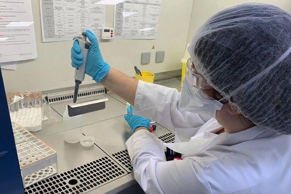 Un test du Covid-19 réalisé dans un laboratoire toulousain.