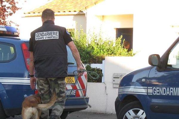Les gendarmes ont lancé une vaste opération qui a permis l'arrestation d'une bande organisée, une trentaine de cambriolages leur sont imputés.