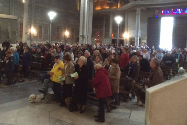 200 paroissiens en l'église Saint-Louis de Lorient pour la bénédiction des animaux de compagnie