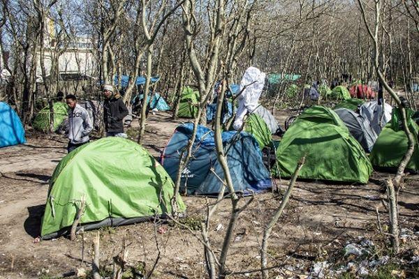 71 % des Calaisiens estiment ne pas être satisfaits de la façon dont la situation des personnes exilées est gérée à Calais.