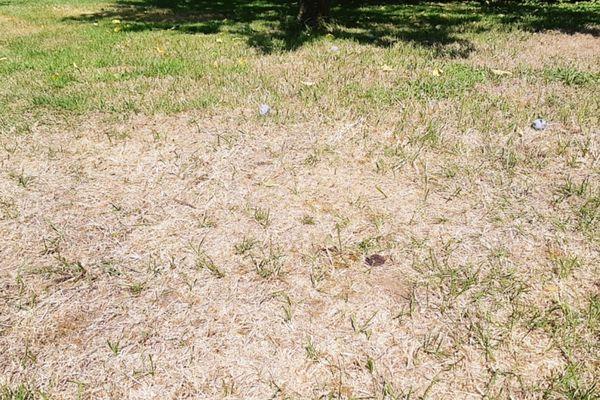 L'usage d'eau est limité en Lorraine en raison de la sécheresse.