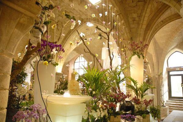 exposition orchidées