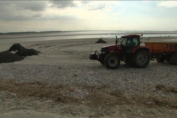 Le Crotoy se débarrasse des galets accumulés sur la plage.