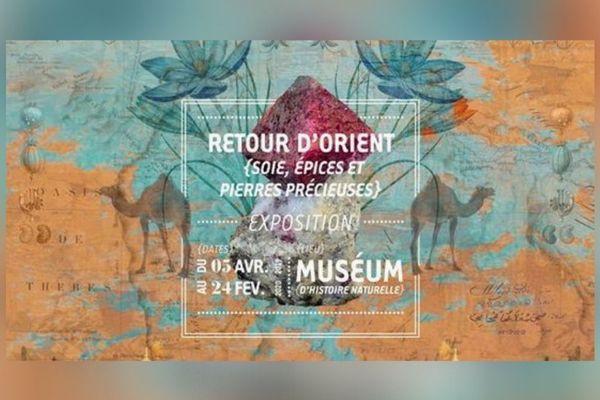 Retour d'Orient, l'exposition du muséum d'histoire naturelle, présente des trésors minéralogiques botaniques et historiques