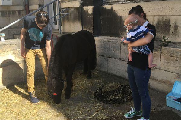 Plusieurs petits patients ont pu découvrir et monter à poney lors de deux journées organisées, pour eux, à l'hôpital Necker à Paris.