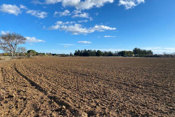 Sur ces terrains, la terre est très fertile, et donc propice à l'agriculture - février 2021