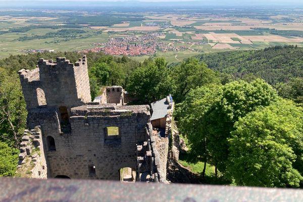 Depuis la tour du château du Bernstein, la vue sur Dambach-la-Ville est incroyable